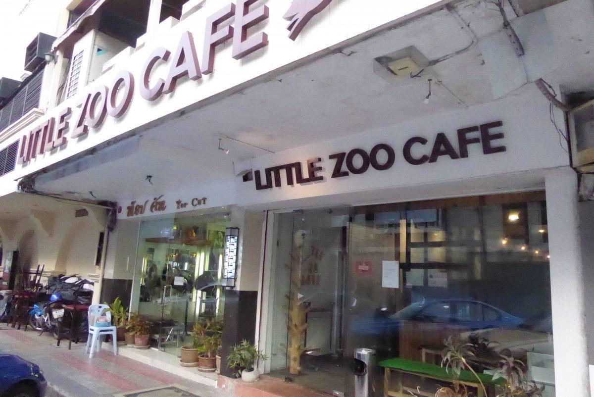 Animal Cafe in Bangkok