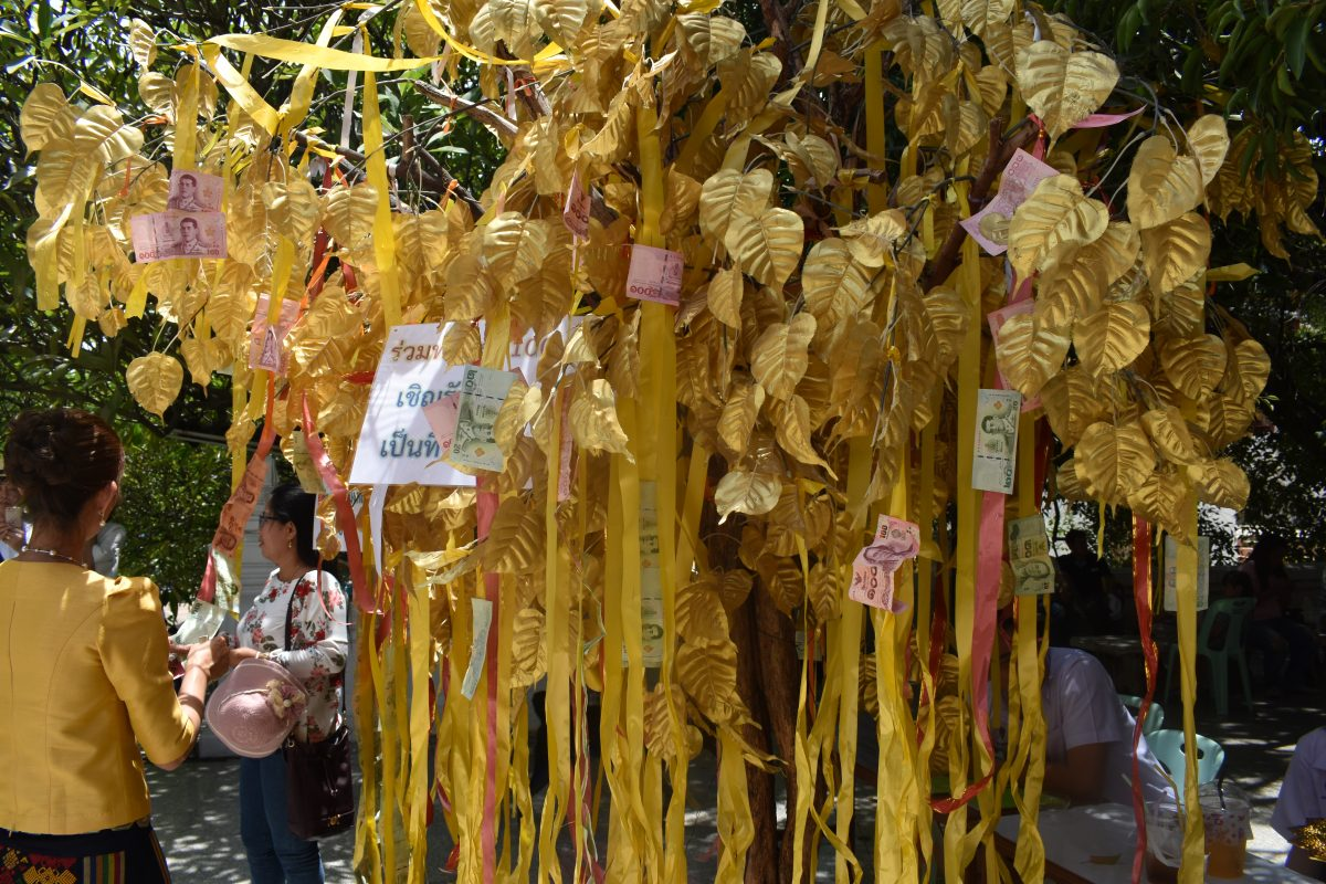 Money Tree in a Thai Temple