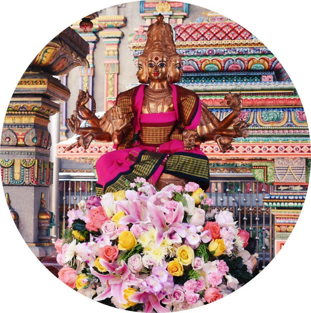 DSC 0295.11 1019x1024 - Hindu Temples & Shrines