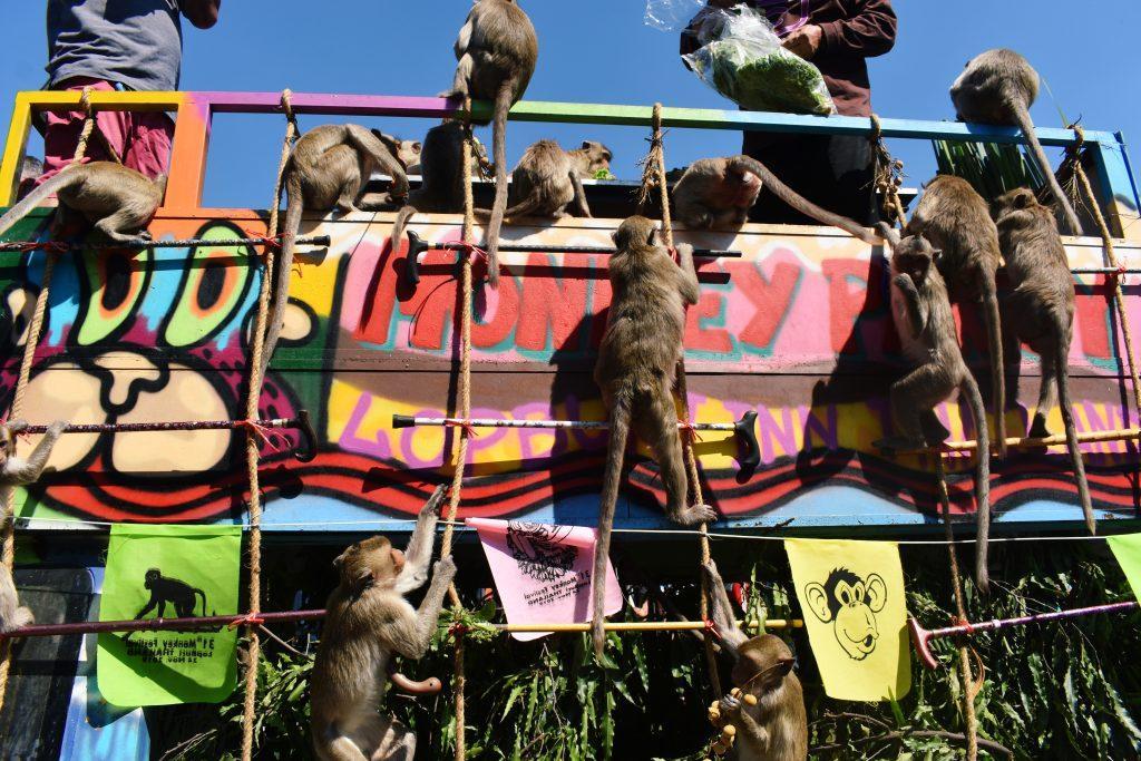 Lopburi Monkey Buffet 2019