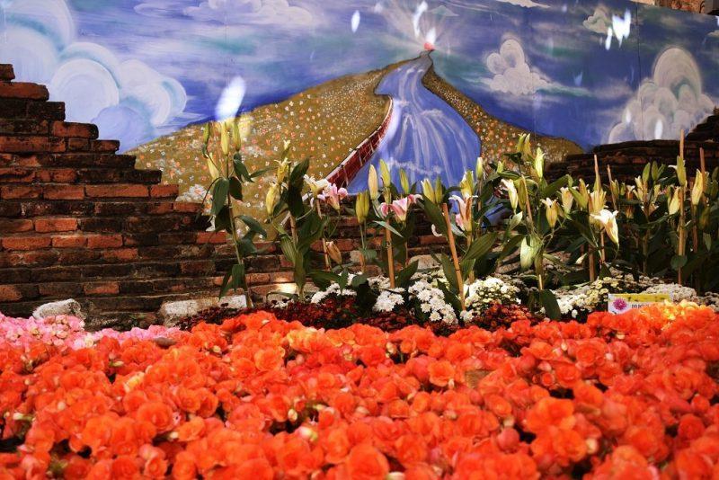 DSC 0059 e1582132369816 - King Narai Fair