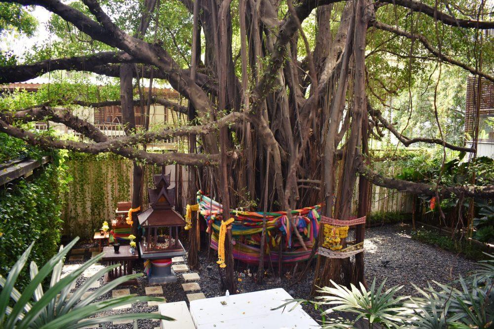 Millennium Hilton Bodhi Tree